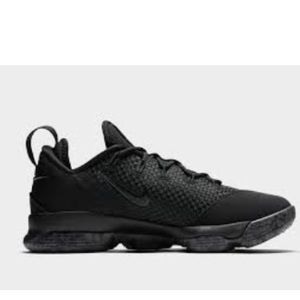 Nike 14 Low Lebron James Triple Black Sneakers